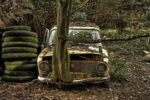 Lost in the woods von Bart Haest