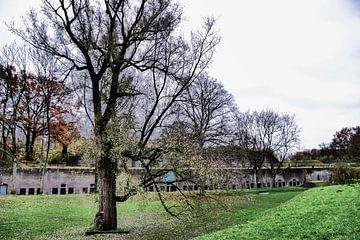 Fort bij Vechten - boom bij fort van Wout van den Berg
