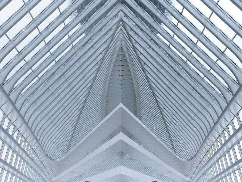Lines of a roof as abstract van Brian Morgan