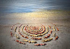 Steen cirkels van Mies Heerma