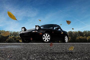 Wenn die Blätter herunterfallen, geht das Dach hoch von Maikel van Willegen Photography