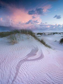 Dünen Texel von