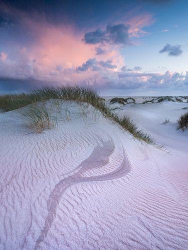 Duinen op Texel van