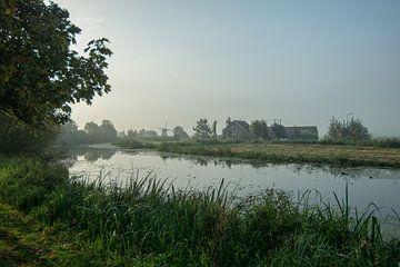 Natuur in de ochtend van