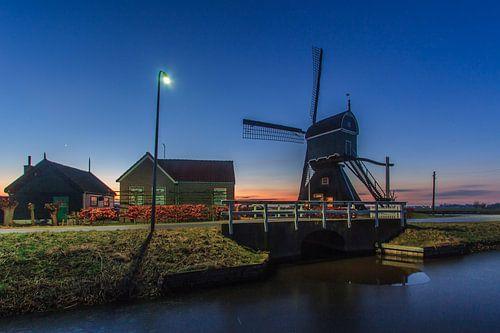 Scene uit de polder