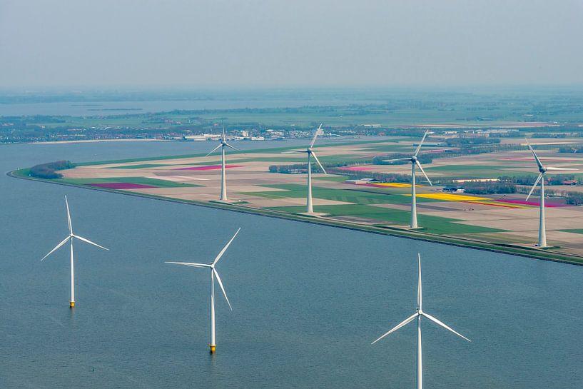 Vue aérienne de diverses couleurs du champ de fleurs de tulipes sur Sjoerd van der Wal