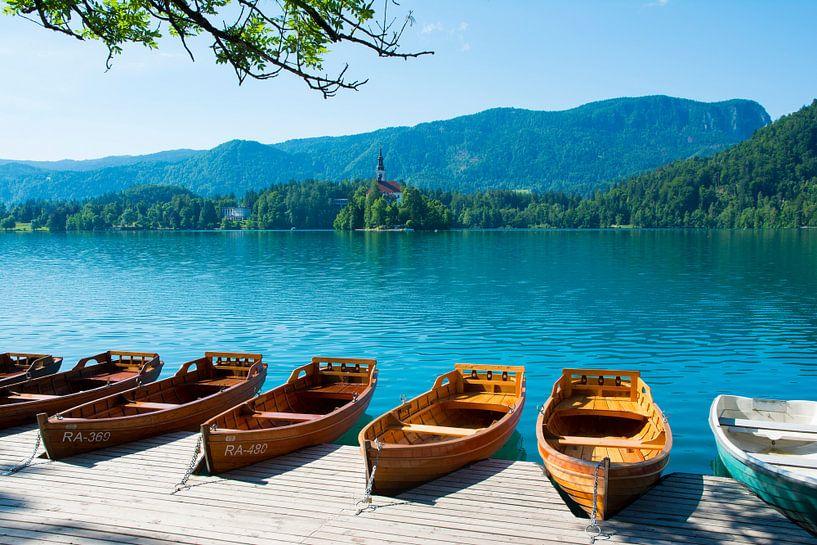 Roeiboten aan het meer van Bled van Lifelicious