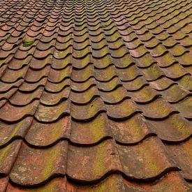 dakpannen in close-up van Corrie Ruijer