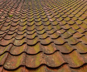 Dachziegel in Nahaufnahme von Corrie Ruijer