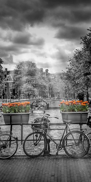 Typisch Amsterdam van Melanie Viola