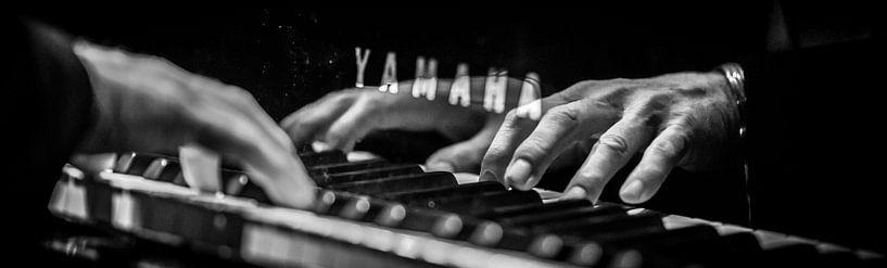 Piano Playing von Margriet Cloudt