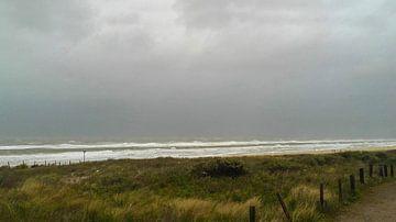 Zee in storm van Rinke Velds