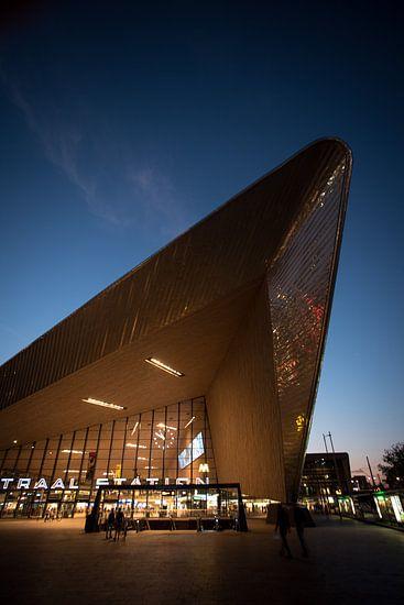Station Rotterdam 02 van Arjen Schippers