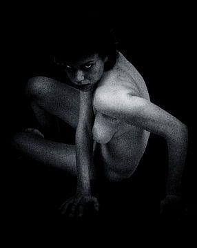 Nackte Frau - Nackt, der Sie nackt betrachtet, als ob Sie nackt wären von Jan Keteleer