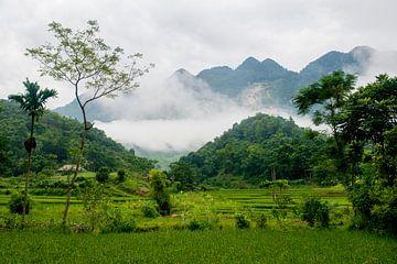 Oosterse wanddecoratie Vietnam