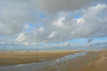 Strand met Hollandse wolken, kiters en zee meeuwen. van Sigune italiaanser