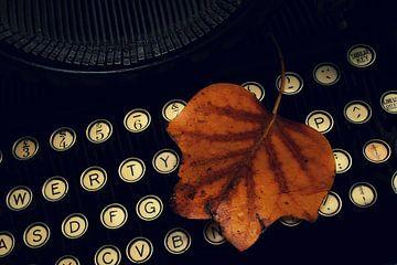 vintage typewriter von Miranda Auwens