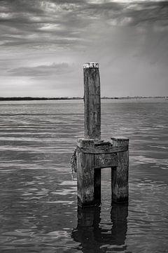 Lauwersmeer van Teo Goudriaan