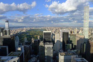 Uitzicht op Central Park van Annelies van der Vliet