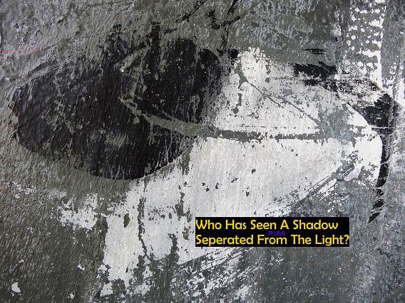 Rumi: Who Has Seen A Shadow...