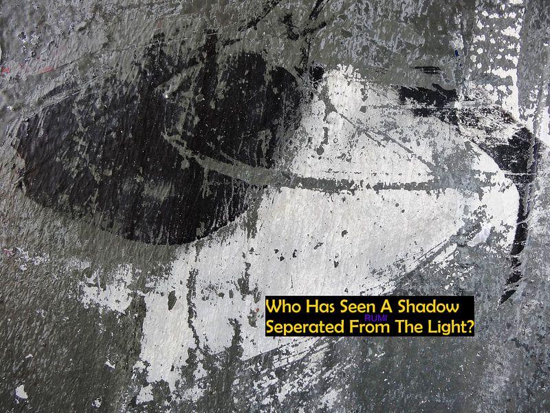 Rumi: Who Has Seen A Shadow... van MoArt (Maurice Heuts)