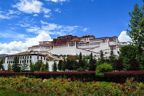 Magisch  Potala  Palace