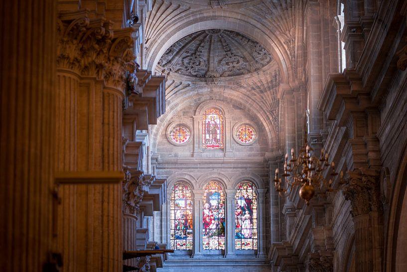 Malaga Cathedral van Maarten Jacobi