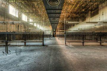 Symmetrisch, diepte en lijnenspel in een grote hal van Sven van der Kooi
