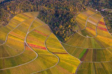 Wijngaarden in Stuttgart vanuit de lucht van Werner Dieterich
