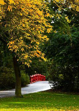 Kleur in Valkenberg Park Breda van JPWFoto