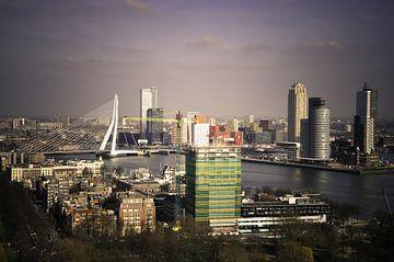 De skyline van Rotterdam  van Robbert Wilbrink