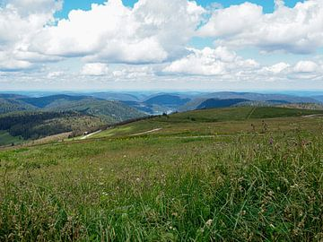 Vogezen landschap gebergte bergen natuur van Delphine Kesteloot