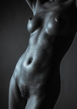 Fine Art Nude_2a van Anton Path