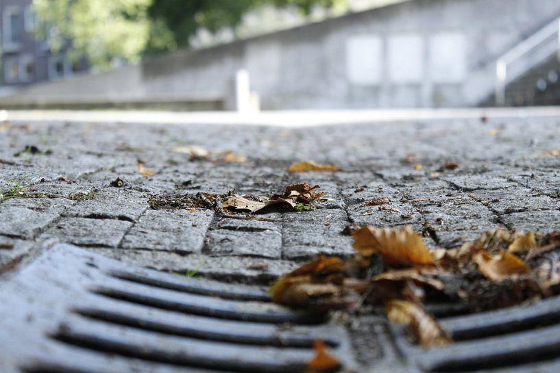Sonniger Herbst von Sjoerd Post