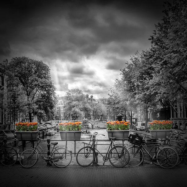 AMSTERDAM Gentlemen?s Canal van Melanie Viola