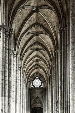 In de kathedraal van Amiens van Ellen van Schravendijk