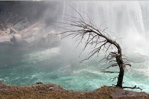 Niagarawatervallen / Niagara Falls sur