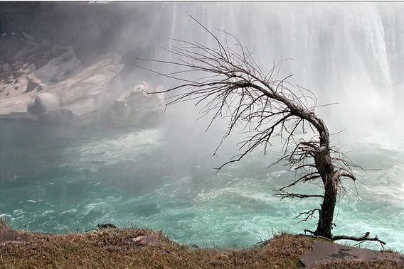 Niagarawatervallen / Niagara Falls van Margo Schoote