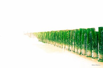 paalhoofden de zee in van nilix fotografie
