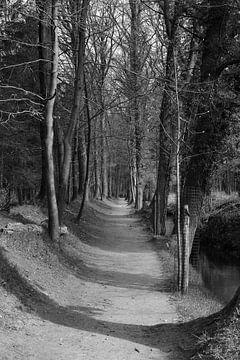 Eine Allee auf einem Anwesen entlang eines Baches von Gerard de Zwaan