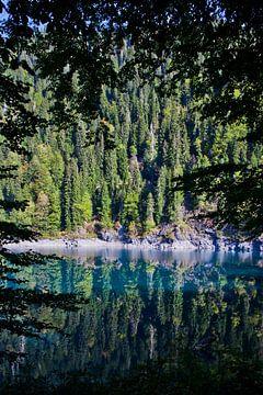 Türkisblauer See zwischen den Zweigen der Bäume und bewaldetes gegenüberliegendes Ufer, Wildnis. von Michael Semenov