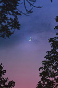 Mond von Isa V