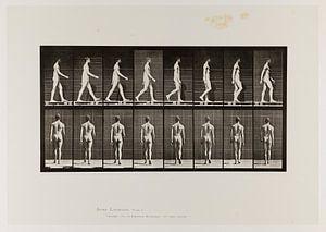 Oude poster van een naakte man die wandelt uit 1887
