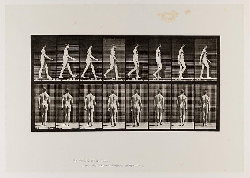 Oude poster van een naakte man die wandelt uit 1887 van Atelier Liesjes