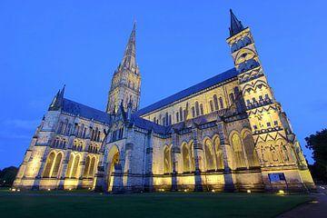Cathedral Salisbury von Patrick Lohmüller