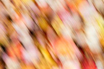 Herfstkleuren 3/3 van Arnoud Kunst