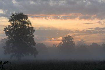 nevelige wolken van Tania Perneel