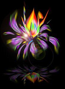 Blühende Fantasie 3 von