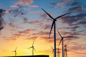 Windturbines bij zonsopkomst