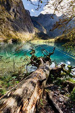 Obersee in het Berchtesgadener Land van Dirk Rüter